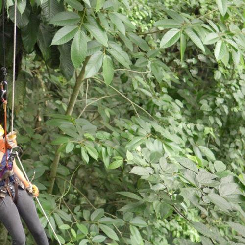 Rapel Vista Arenal Adventure Park