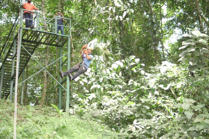 Tarzán Swing